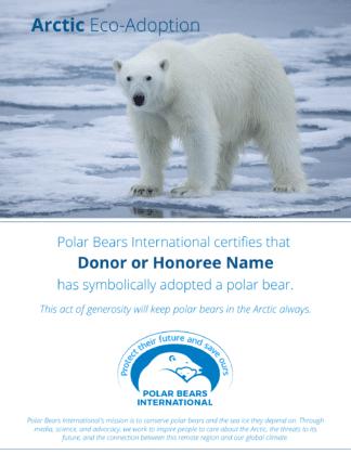 Arctic Eco-Adoption Certificate