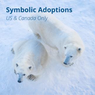 Symbolic Adoption Kits (U.S. and Canada Only)