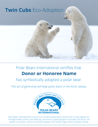 Twin Cubs Eco-Adoption Certificate