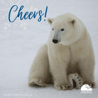 polar-bear-arctic-cheers-ecard