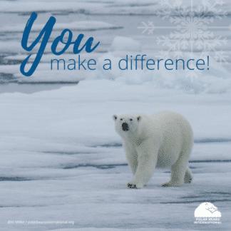 polar-bear-arctic-difference-ecard