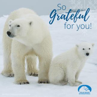 polar-bear-mom-cub-grateful-ecard