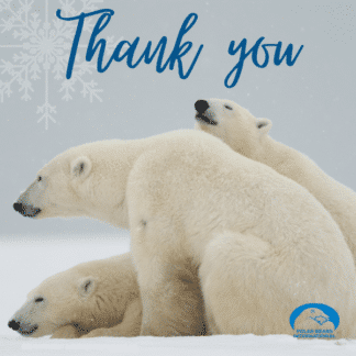 polar-bear-mom-cub-thank-you-ecard